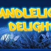 bingo hall bingo spiele online candlelight