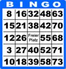 bingo spielen regeln
