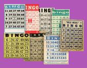 bingo Geschichte